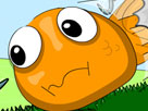 Çılgın Balık