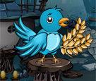 Sihirli Çiftlik Kuşları